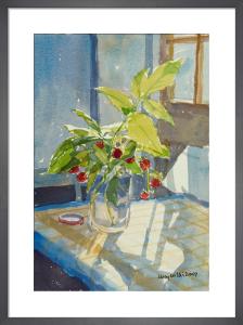 Raspberries in a Jam Jar by Lucy Willis