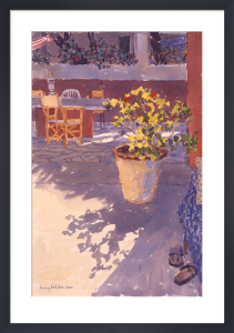 Shoes and Geraniums by Lucy Willis