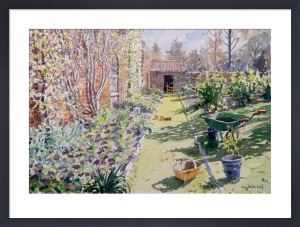 The Walled Garden by Lucy Willis