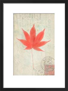 Leaf 2 by Deborah Schenck