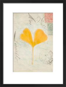 Leaf 4 by Deborah Schenck