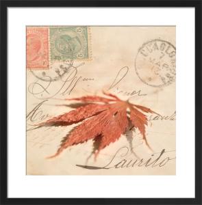 Leaf Series 2 by Deborah Schenck