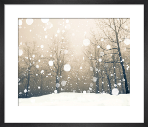 Winter by Robert Cadloff