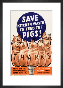 Save Kitchen Waste to Feed the Pigs! by Anonymous