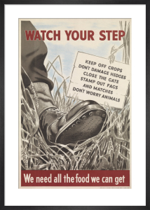 Watch Your Step by Anonymous