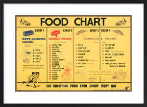 Food Chart by Anonymous