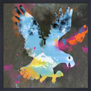 Fly Life by Sunil Pawar