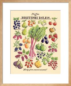 Fresh Fruits by Kelly Hall