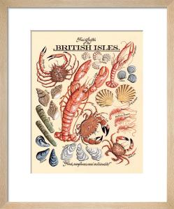 Fresh Shellfish by Kelly Hall