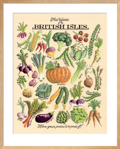 Fresh Vegetables by Kelly Hall