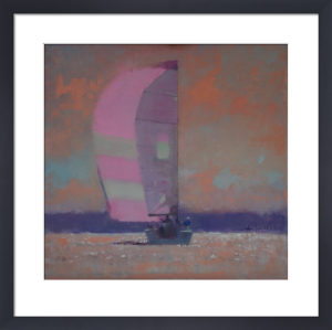 Pink Spinnaker by John Harris