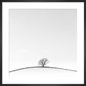 Dales Hill by Doug Chinnery