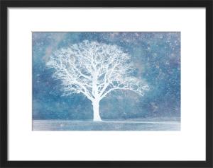 Ice Dream by Doug Chinnery