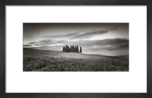 Tuscan Copse by Doug Chinnery