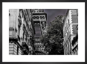 A Glimpse of La Dame by Julian Elliott
