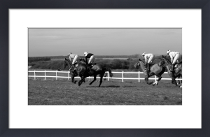 New Forest Point to Point by Luru Wei