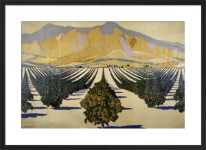 Empire Marketing Board - South African Orange Orchards by Guy Kortright