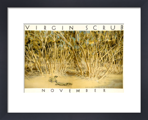 Empire Marketing Board - Virgin Scrub November by Harold Sandys Williamson