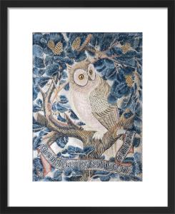 Owl by George Jack