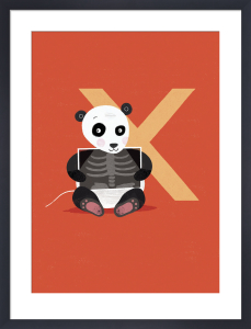 X is for X-ray by Sugar Snap Studio