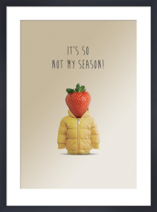 Not My Season by Matthew Elliott