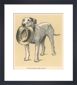 Bull Terrier, 1927 by Cecil Aldin