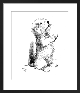 Sealyham Terrier, 1932 by Cecil Aldin