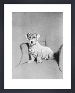 Who said Rats? 1932 by Cecil Aldin