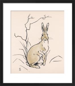 Alert Hare, 1902 by Cecil Aldin
