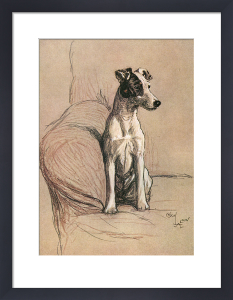Fox Terrier, 1928 by Cecil Aldin
