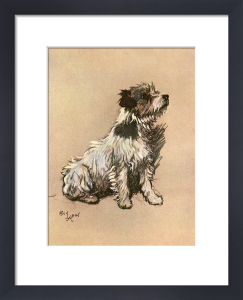Little Dog Riley, 1928 by Cecil Aldin