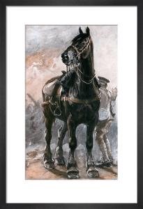British Artillery Horse by Philip Dadd