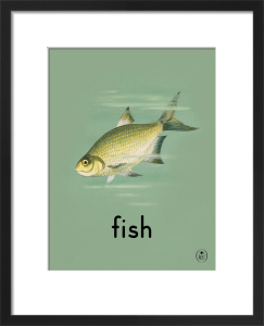 fish by Ladybird Books'