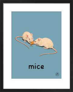 mice by Ladybird Books'
