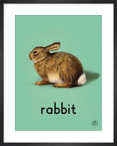 rabbit by Ladybird Books'
