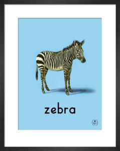 zebra by Ladybird Books'