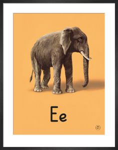 E is for elephant by Ladybird Books'
