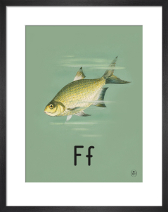 F is for fish by Ladybird Books'