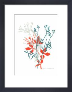 Coastal Plants 1 by Fiona Howard