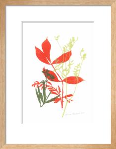 Coastal Plants 2 by Fiona Howard