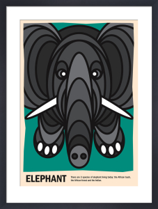 Elephant by Simon C Page