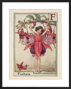 Fuchsia Fairy by Cicely Mary Barker