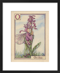 Orchis Fairy by Cicely Mary Barker