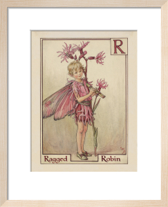 Ragged Robin Fairy by Cicely Mary Barker