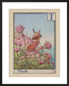 Thrift Fairy by Cicely Mary Barker