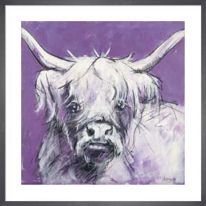 Bull on Purple 2 by Nicola King