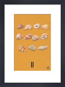 11 by Ladybird Books'