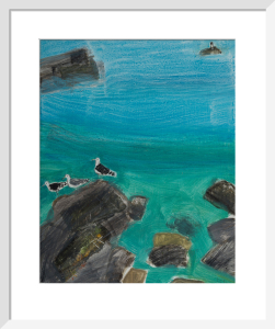Crab Rock Seagulls by Emma Jeffryes