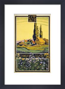 Flowers of the season, 1933 by Walter E Spradbery