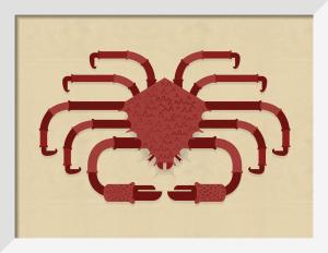 Crab by Alan Dalby